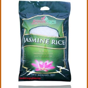 túi gạo 5 kg 1